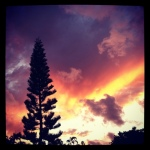This was taken at the end of my street and I put it on Instagr.am. I love gazing at sunsets.