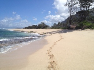 An Oahu beach to myself?! Camp Erdman on the North Shore. High surf advisory, so all the action was east of Haleiwa.