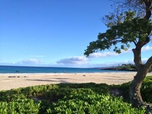 We visited the bay at Hapuna Beach State Park the day after the race. What a gorgeous place.