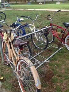 Old style bikes and chickens.