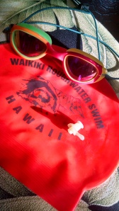 The clown goggles. Seriously, these TYR goggles are polarized, so great for a sunshiny day. One earplug for my right ear. This year's WRS cap.