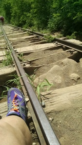 Yes, my awesome Brooks Pure Cadence running shoes. Yes, this is typically the condition of the tramway all the way up.