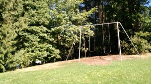There are four very strong and big swing sets on the Reed campus, one of which is right near Sophie's dorm. Dontcha love it?!?!